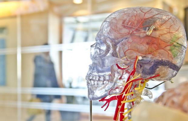 Trzy stadia uszkodzenia mózgu u chorych na COVID-19