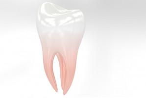 Zęby jako potencjalne źródło skrajnie toksycznych związków