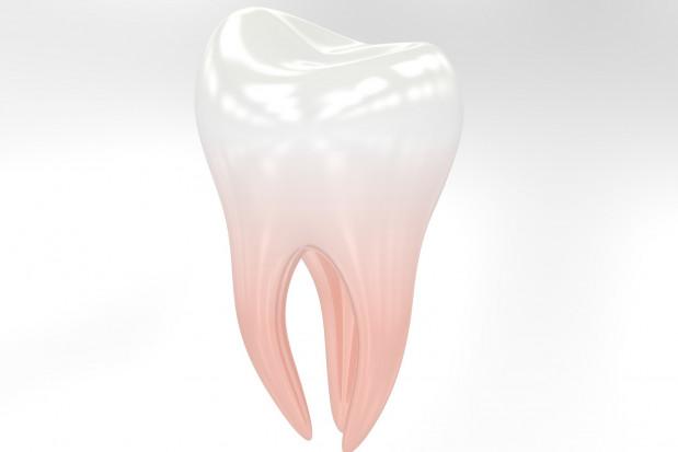 Pamięć zębów