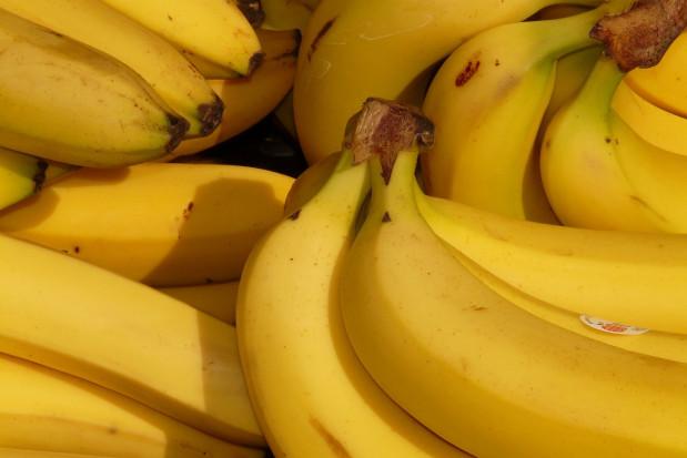Kamień nazębny dowodem, że banany dotarły do Europy ok. 4 tys. lat temu