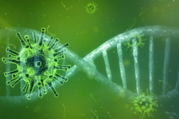 Zachodniopomorskie: co piąty mieszkaniec z przeciwciałami na koronawirusa
