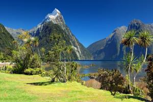 Nowa Zelandia: co drugi dentysta cierpi na wypalenie zawodowe