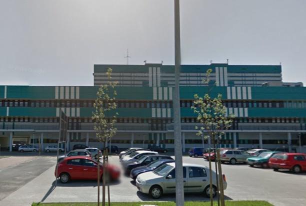 UM w Łodzi: stanowisko dla asystenta w Zakładzie Stomatologii Wieku Rozwojowego