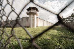 Nawet więzienie za oszczercze opinie na temat stomatologów