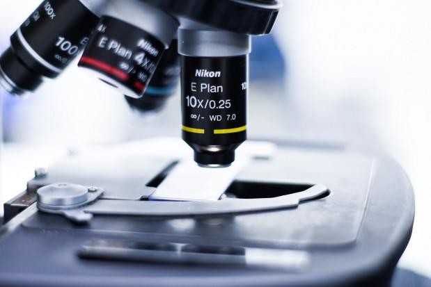 Poznań: Sukces naukowy studentów stomatologii