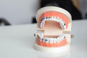 GUMed: praca w Zakładzie Ortodoncji