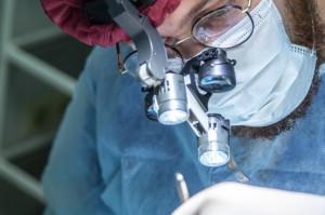 UM w Poznaniu: potrzebny wykładowca (chirurgia stomatologiczna i periodontologia)