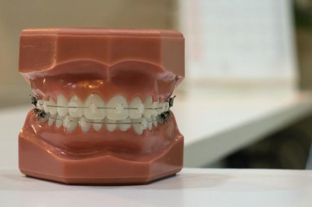 GUMed: konkurs na stanowisko asystenta w Zakładzie Ortodoncji