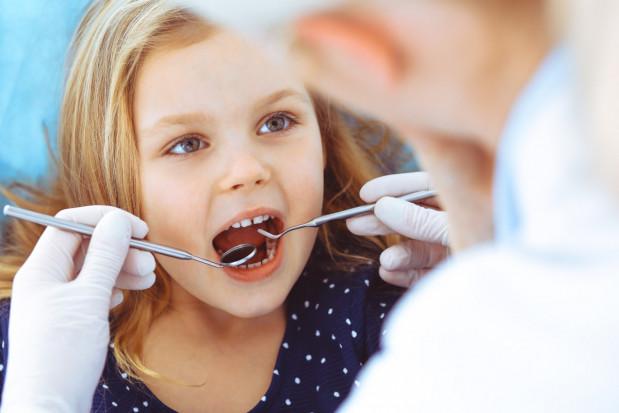 Kto z dentystów chce leczyć dzieci w Centrum Usług Społecznych w gminie Czarnia?