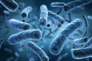 Przy alergii na penicylinę rośnie ryzyko zakażenia miejsca po usuniętym zębie